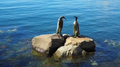 Penguin bronzes